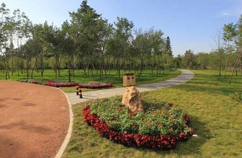 长春首个树木主题公园完美落户保利林语旁