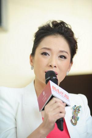 视台财经主持人李南-豪宅价值新趋势对话 红玺台楼王成标杆