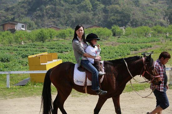 小孩骑马矢量图