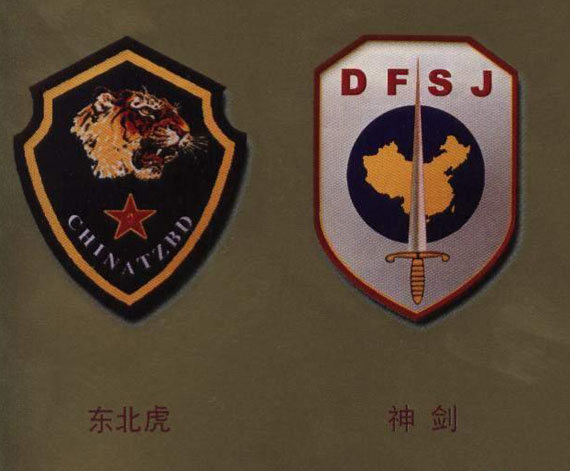 组图:中国解放军七大特种大队臂章