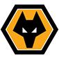 狼队-球队logo