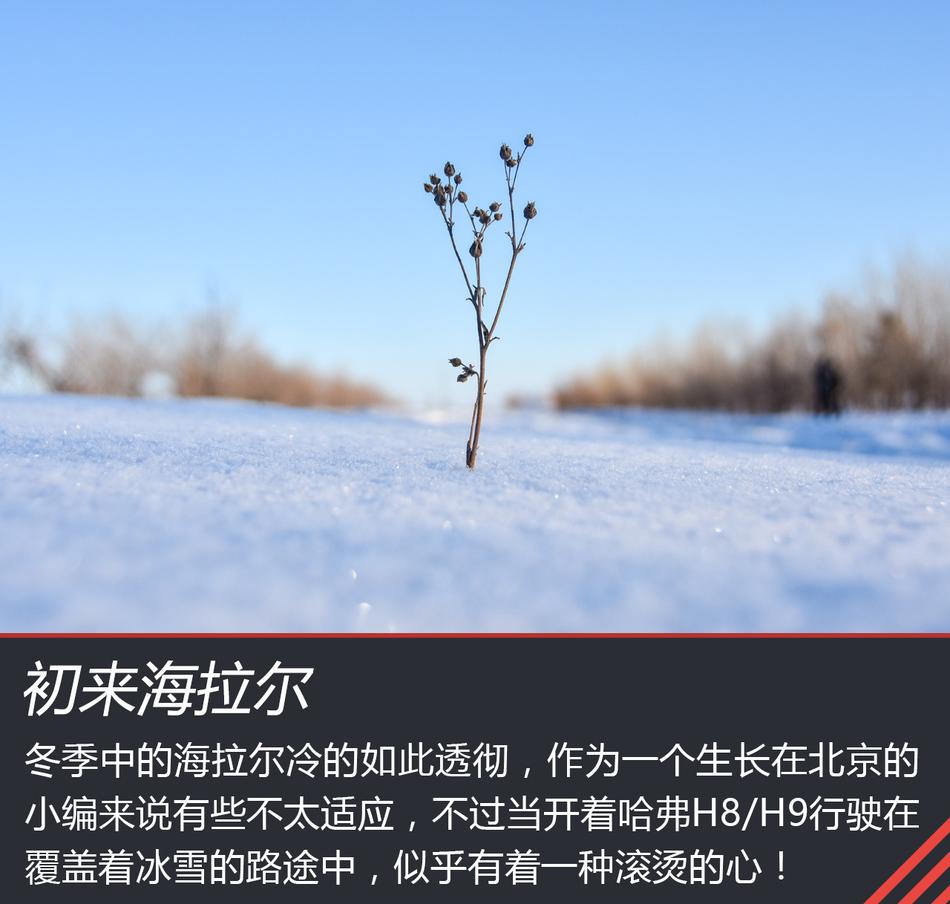 在雪地上撒点儿野 哈弗H8/H9冰雪之旅