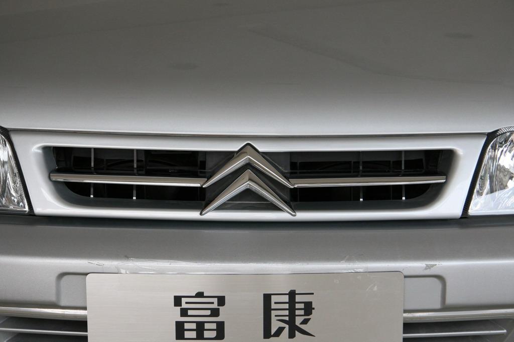 神龙汽车富康进气格栅_富康细节图片31902_汽车图库