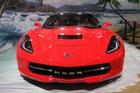 2014年第12届广州国际车展 图为:雪佛兰科尔维特