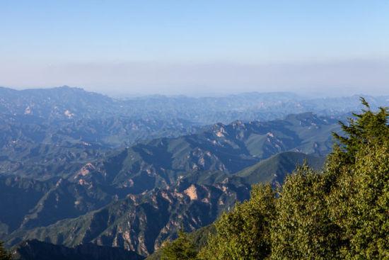 游天然植物园 感受绿色宝库的魅力 雾灵山
