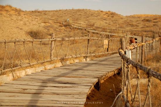 沙坡头沙漠酒店 赏满天繁星