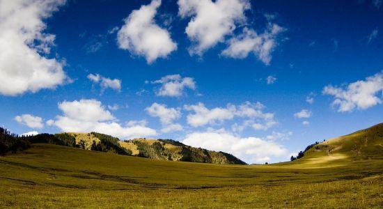 中国最美六大草原 川西高寒草原