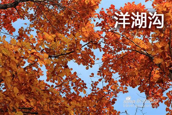 辽宁赏枫地图 本溪篇