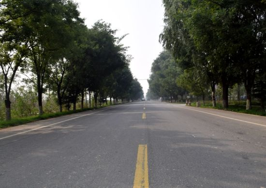 陕西最美乡村公路 谷咀县乡道