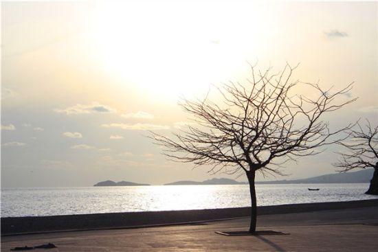 大连海滨游览 最让人喜欢的冬日风景