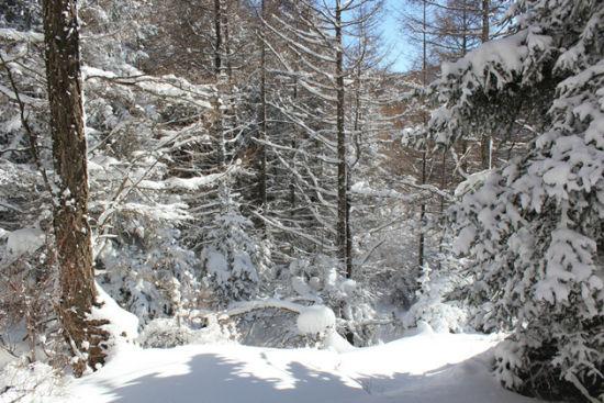 冬天来山西深山踏雪徒步行