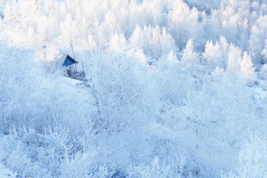 额尔古纳雾凇奇景 拥抱绝美冬日