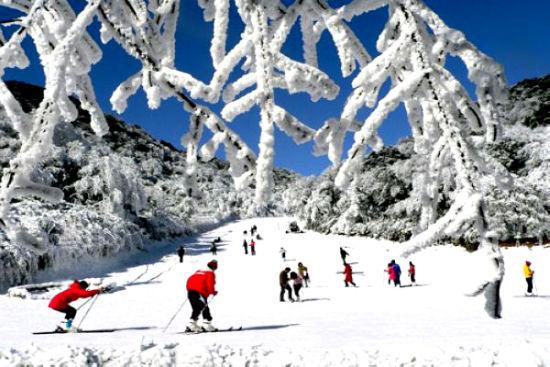 约上小伙伴 一起到照金滑雪去