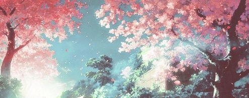 在繁花中打马而过 三月南宁赏花点合集