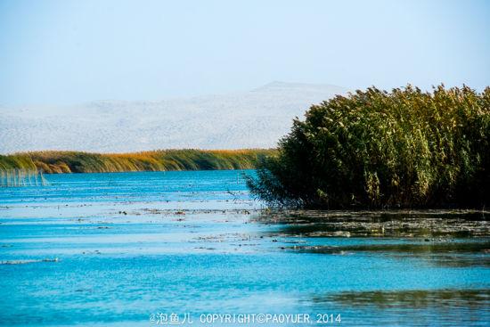 博斯腾湖 沙漠瀚海中的一颗明珠