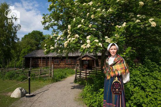 遇见瑞典 遇见自然与自由的魅力