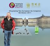 欧洲围棋大会官网图片