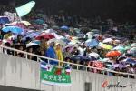 图文-[中超]北京国安VS长春亚泰球迷冒雨观战成一景