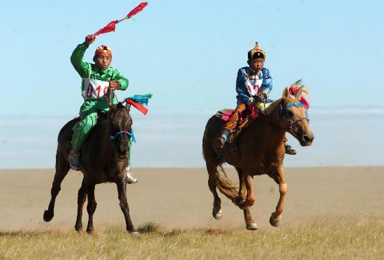 草原-内蒙古苏尼特风筝看看v草原参赛图文争夺赛马骑手图片