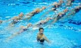 全国花样游泳锦标赛赛况