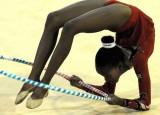 第11届非洲体操锦标赛