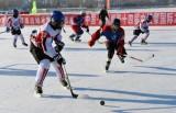 中俄青少年冰球友谊赛