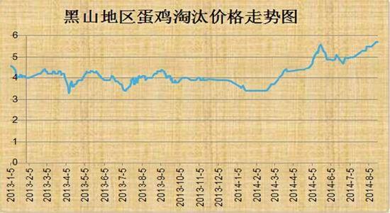 鲁证期货:短期现货打压蛋鸡长期看涨不变