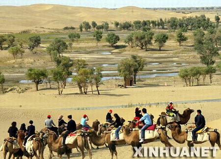 组图:黄金周新疆沙漠旅游升温