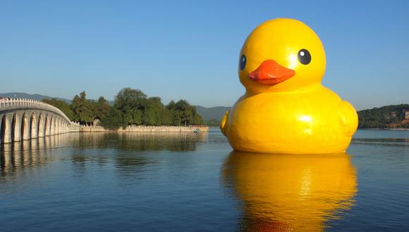 大黄鸭事件是什么_俄媒盘点中国2014年趣事:大黄鸭被山寨戴假发|大黄鸭|脸基尼_新浪