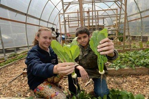 色农夫影院_美国校园开辟种植农场 小学生乐享农夫生活