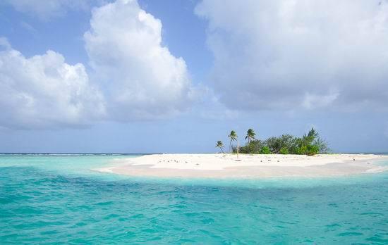 无人岛的幸福3_资料:《加勒比海盗4》场景--无人岛_影音娱乐_新浪网