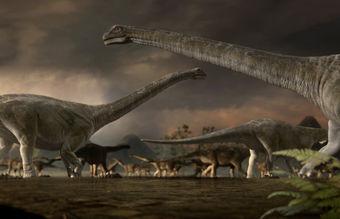 关于恐龙的纪录片_纪录片《恐龙星球》亲历恐龙为王的世界_影音娱乐_新浪网