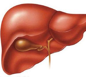 说病解药系列:肝硬化的防治