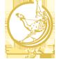 亚冠B小组第6轮 艾杜哈尼 1-0 阿布扎比联合_直播间_手机新浪网