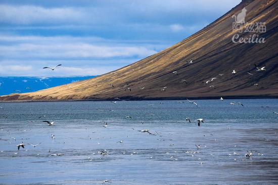 回忆刻骨铭心  小太阳_冰岛旅游博客_冰岛自由行博客_新浪旅游