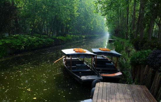 滨湖湿地森林公园